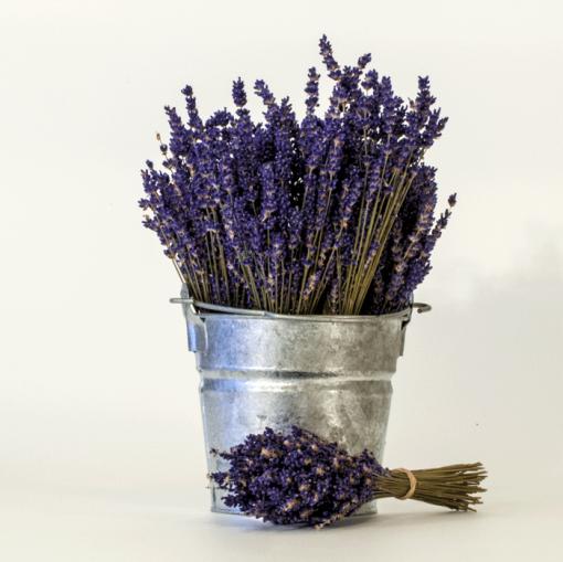 Dried Lavender Bouquet English