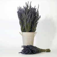 Dried Lavender Bouquet French