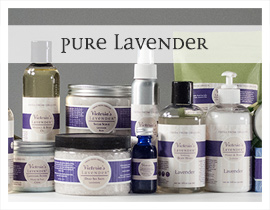 Pure lavender fragrance collection
